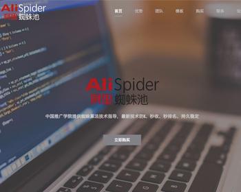 最新阿里蜘蛛池破解版程序 阿里蜘蛛池 第1张